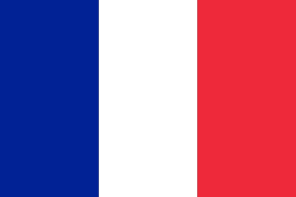 french-flag-large