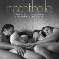 "Geek Film Review Vol. 2 No. 5: ""Nachthelle"" (Bright Night)"