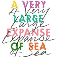 Geek Book Review: A Very Large Expanse of Sea