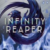 Geek Book Review: Infinity Reaper